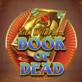 Book of Dead z 55 free spinami na start w Piggy Bank